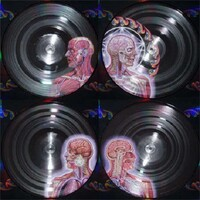 TOOL - Lateralus (Picture Disc Vinyl)