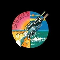 PINK FLOYD - Wish You Were Here (180g Vinyl)